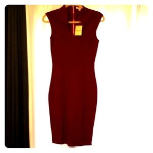 NWT Burgundy bodycon dress